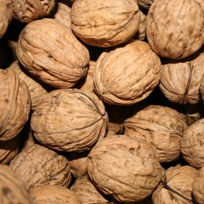Walnuts with shell 1Kg